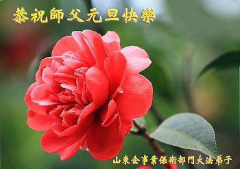 http://greetings.minghui.org/mh/article_images/2013-12-13-312111757867_01--ss.jpg