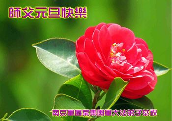 http://greetings.minghui.org/mh/article_images/2013-12-18-312112140229_01--ss.jpg