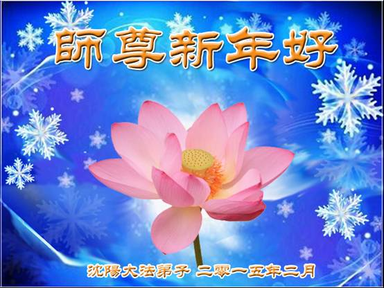 http://greetings.minghui.org/mh/article_images/2015-2-2-502020539660p7_01.jpg