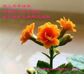 中国民众给李洪志大师拜年(2016)